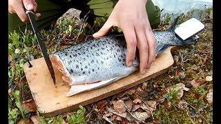 Как ловить кумжу летом на кольском полуострове
