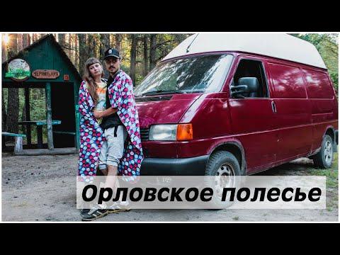 Поездка за черникой  день 1. Орловское Полесье.