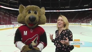 FULL Episode Positively Arizona Behind the Scenes at Gila River Arena