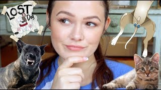 10 Reasons To Neuter Your Pets!