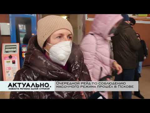 Актуально Псков / 20.10.2021