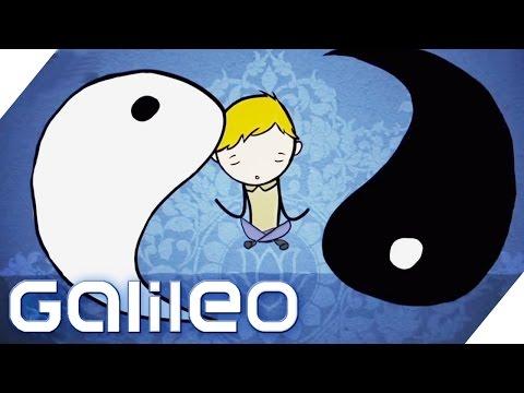 Das Internet das Geschäft chinesisch badow für die Abmagerung