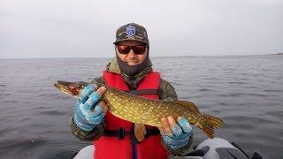 Уроки ловля рыбы на озере нарочь