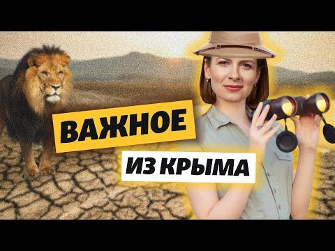 Крым. Бизнес в пандемию и без воды | Важное из Крыма