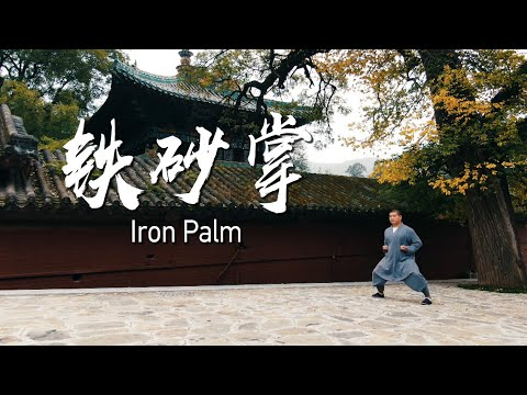 Shaolin iron palm
