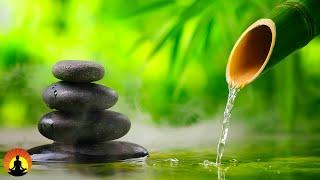 🔴 Relaxing Music 24/7, Meditation, Sleep Music, Calm Music, Healing, Spa, Zen, Relax, Study, Sleep