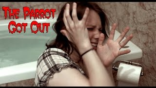 The Parrot Got Out - A Short Horror Film by Parrot Wizard