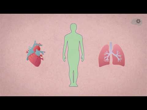 Побочные симптомы гепатита с