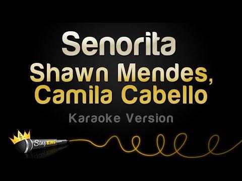Shawn Mendes, Camila Cabello - Señorita (Karaoke Version)