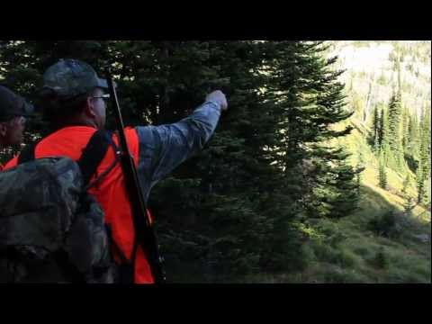 Swan Mountain Hunting