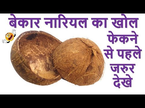 Best Out Of Waste Coconut Shell Material Reuse Easy Room Decor Ideas Art And Craft