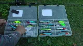 Что такое в рыбы ловля троллингом