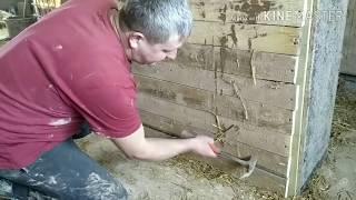 Секреты новой технологии, дом из соломы. Stampfstroh.  Straw house, rammed straw.
