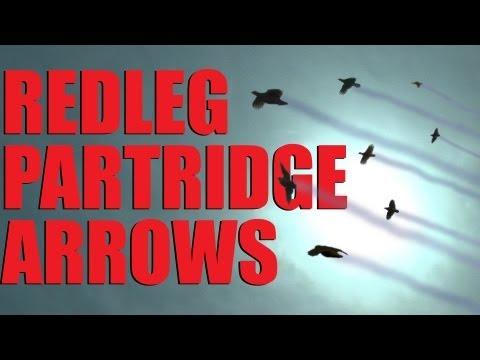 Fieldsports Britain : Supercharged driven partridge
