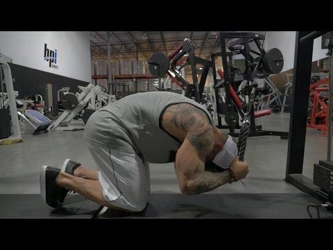 Le programme des entraînements et lalimentation pour le bodybuilding