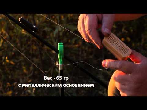 Как вывести биткоин на карточку в беларуси