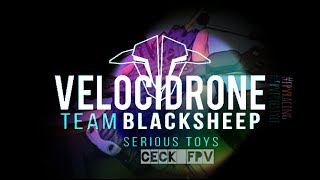 Live VELOCIDRONE | Training all Day | #fpvracing #fpvfreestyle | day 7