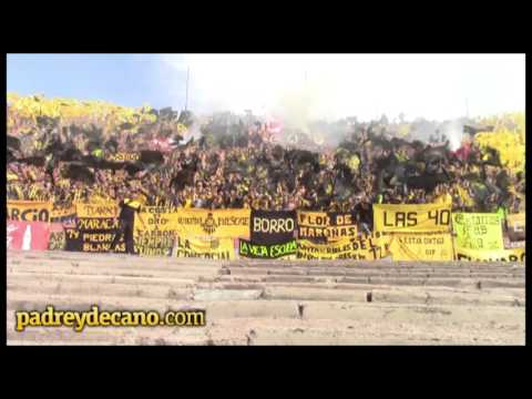 """""""Canciones Hinchada Peñarol - Clásico Apertura 2015"""" Barra: Barra Amsterdam • Club: Peñarol"""