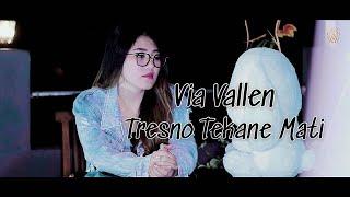 Lirik dan Kunci (Chord) Gitar Lagu 'Tresno Tekane Mati' - Via Vallen