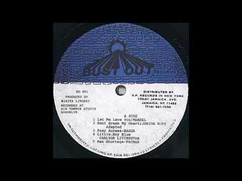 Flexiable Riddim aka Boom Bye Bye Riddim aka Flex Riddim ˜…1994˜…(Bust Out Records) Mix by Djeasy