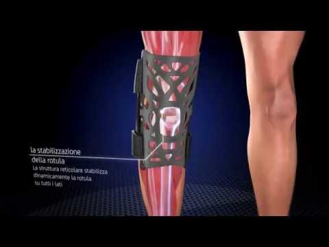 Invalidità, se lartrosi del ginocchio 2 gradi