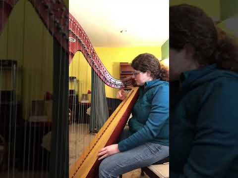 How to play a C Scale on the harp for beginners