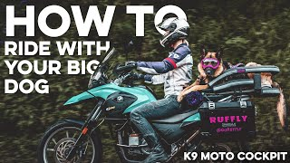 How to Bring Your Dog on a Motorcycle – the K9 Moto Cockpit