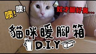 【黃阿瑪的後宮生活】DIY貓咪暖腳箱~來互相取暖吧!