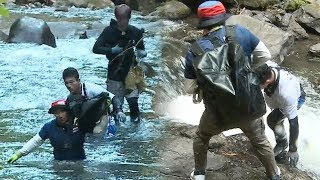 Law Of The Jungle In Sunda Islands EP385