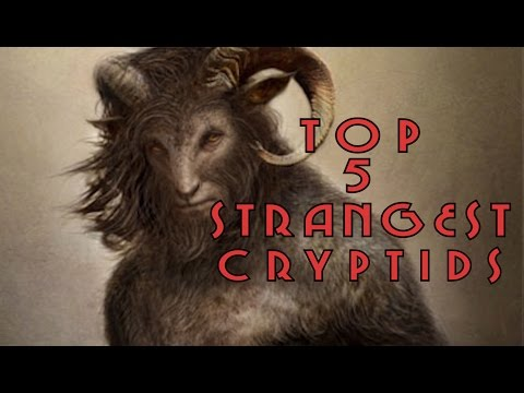 5 Strange Mysterious Creatures And Cryptids