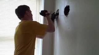 Raccoons in My Walls, Updated & Shortened