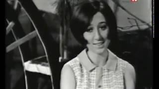 مازيكا شفتو ع العين - هدى حداد - دفاتر الليل تحميل MP3