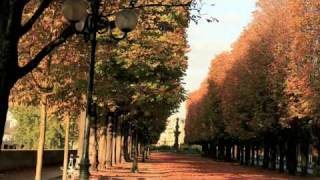 Paris The City Of Love