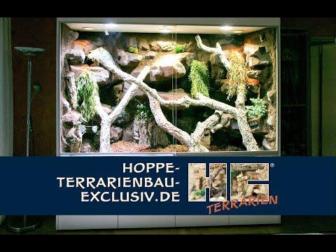 Terrarium für einen grünen Leguan (Iguana iguana)