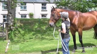 Emma Massingale – Dealing with bargy horses