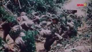 Sức mạnh pháo binh Việt Nam ở Điện Biên Phủ