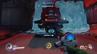 Overwatch: Mei & Bastion tag team