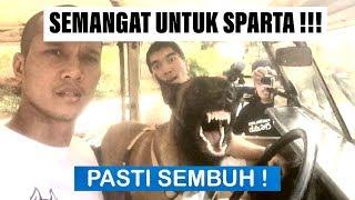 Semangat Untuk SPARTA !!! - VLOG