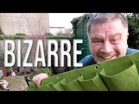 Gardening is just BIZARRE Sometimes