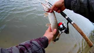 Рыбалка на димитровском мосту новосибирск