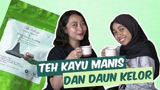 Review Teh Celup Kayu Manis dan Daun Kelor dari Sumba, Ada Manis-manisnya Gitu