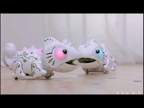 Youtube Video for Robo Dragon - Remote Control Pet