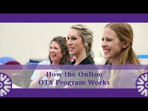 How the Online OTA Program Works at St. Catherine University ...