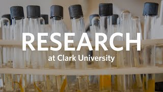 Research at Clark