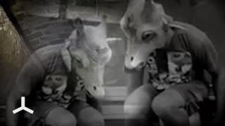 TERRANOVA  '004remedy' feat Stereo Mc's ( Original Video Version)