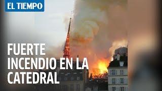 Vea El Incendio Que Consumió La Catedral De Notre Dame | EL TIEMPO