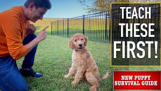 NEW PUPPY SURVIVAL GUIDE: The FIRST Issues to Educate Your NEW PUPPY! (EP: 3)
