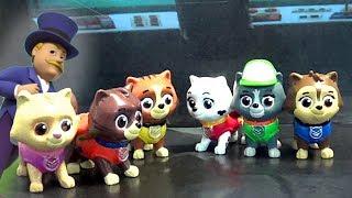 Щенячий Патруль - Осторожно Конфеты - новые серии. Paw Patrol Pup Fu and Kitty.