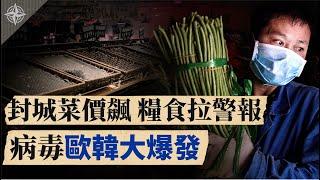 【解讀】秋行軍蟲來襲,糧食拉警報;大疫當前,中共為何挑釁台灣?中國封城菜價飆,人民生活苦(2020.2.26)|世界的十字路口 唐浩