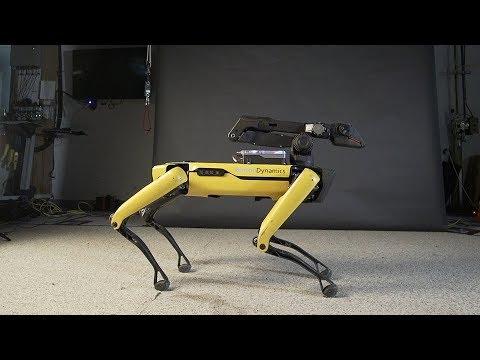 Šokantis keturkojis robotas parketo karaliumi. Šių judesių pavydės daugelis profesionalų